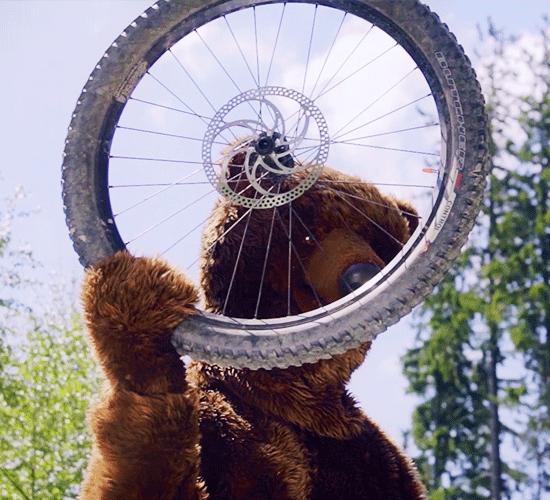 st_cyklista